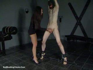 Slapping dzimumloceklis un ballbusting locekļa un olu mocīšana