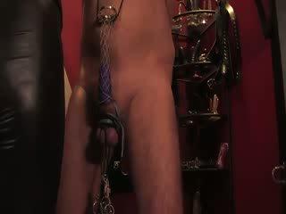 Wanita simpanan harnesses dia sub dengan nt dan siksaan alat kelamin pria